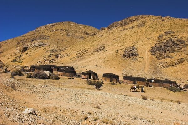 Aimaq nomad camps, near village of Jam, Ghor (Ghowr province), Afghanistan, Asia