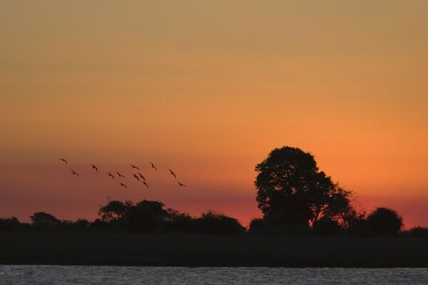 Sunset over Chobe River, Chobe National Park, Botswana, Africa