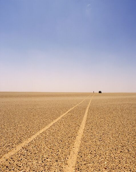 Typical example of the reg, a vast featureless stoney plain, Sahara region, Algeria, North Africa, Africa