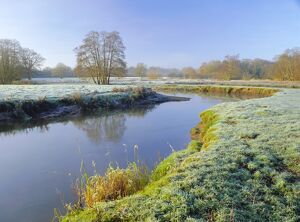 A frosty morning on Surrey Wildlife Trust's wetland reserve, The River Wey at