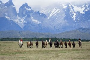 A group of gauchos riding horses, with the Cuernos del Paine (Horns of Paine) mountains behind