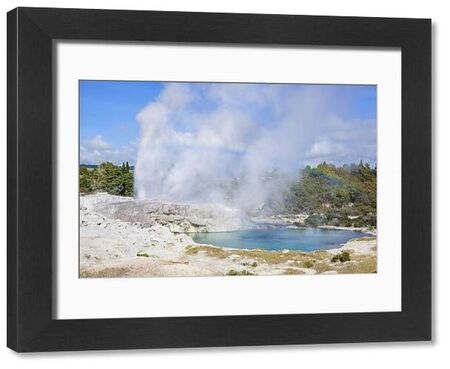 Pohutu geyser and Prince of Wales Feathers geyser, Te Puia, Whakarewarewa Thermal Valley, Rotorua, North Island, New Zealand, Pacific