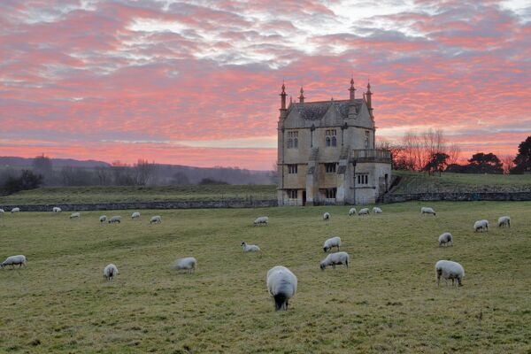 Banqueting House of Campden House and sheep at sunset, Chipping Campden, Cotswolds, Gloucestershire, England, United Kingdom, Europe