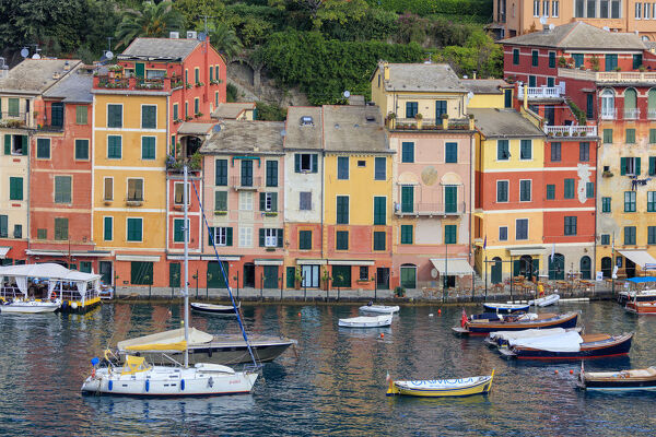 Harbour and typical coloured houses, Portofino, province of Genoa, Liguria, Italy, Europe