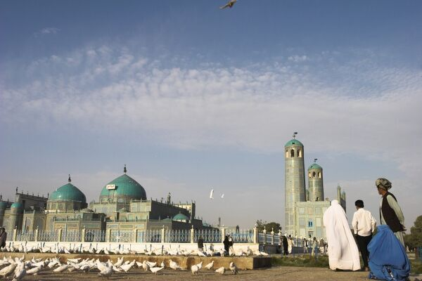 Lady in burqa feeding famous white pigeons at Shrine of Hazrat Ali, Mazar-I-Sharif, Afghanistan, Asia