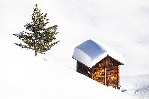 Traditional hut in the winter scenery, Livigno, Valtellina, Lombardy, Italy, Europe