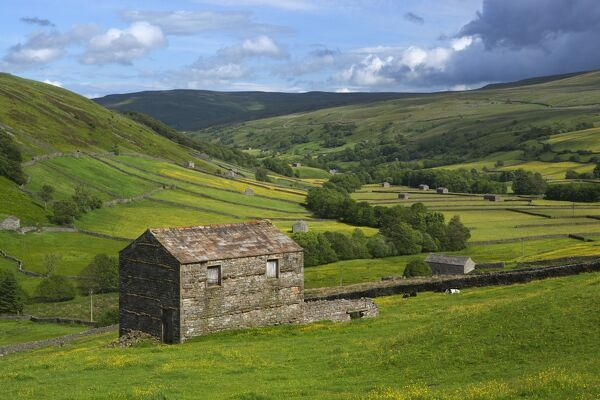 View over the Swaledale valley, near Thwaite, Yorkshire Dales National Park, Yorkshire, England, United Kingdom, Europe