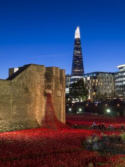 ceramic poppies forming installation blood swept