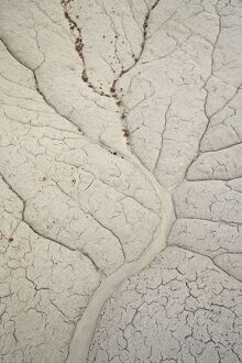Erosion patterns in a small drainage, Bisti Wilderness, New Mexico, United States