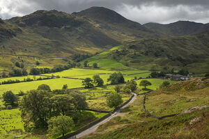 rolling farmland mountains little langdale lake