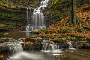 scaleber force waterfall autumn yorkshire dales